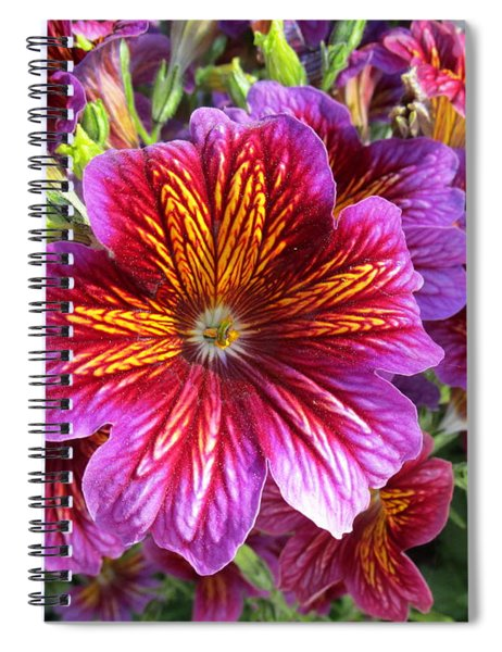 Paragon Spiral Notebook