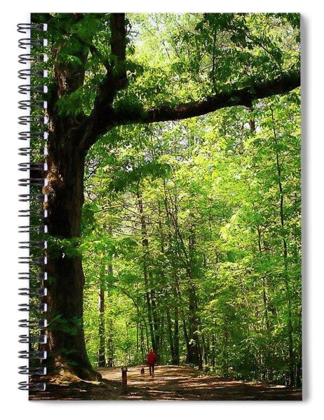 Paris Mountain State Park South Carolina Spiral Notebook
