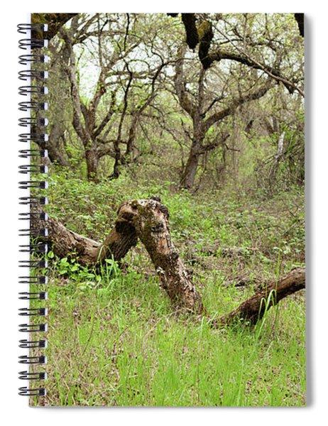 Park Serpent Spiral Notebook