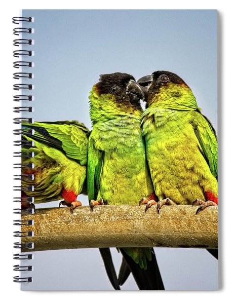 Parrots In South Florida Spiral Notebook