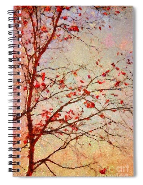 Parsi-parla - D04c03t01 Spiral Notebook