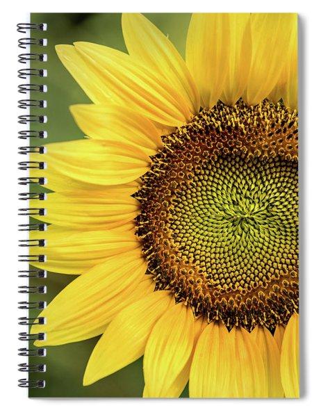 Part Of A Sunflower Spiral Notebook