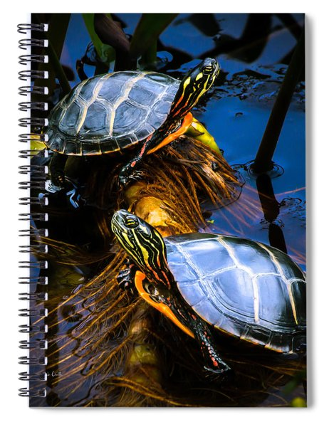 Passing The Day With A Friend Spiral Notebook