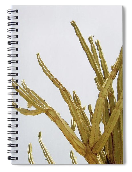 Pastel Cactus- Art By Linda Woods Spiral Notebook
