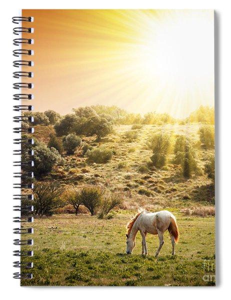 Pasturing Horse Spiral Notebook