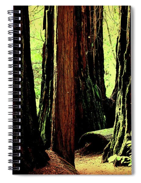 Path Through The Forest Edge . 7d5432 Spiral Notebook