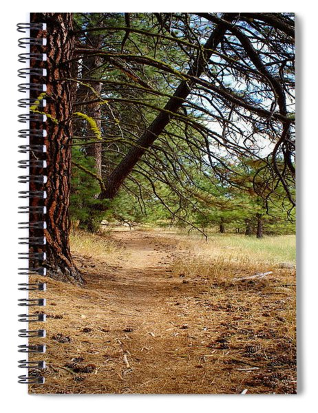 Path To Enlightenment 1 Spiral Notebook