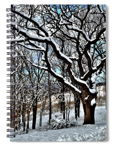 Path To The Lookout Spiral Notebook
