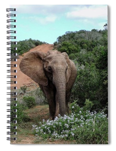 Pause To Smell The Flowers Spiral Notebook