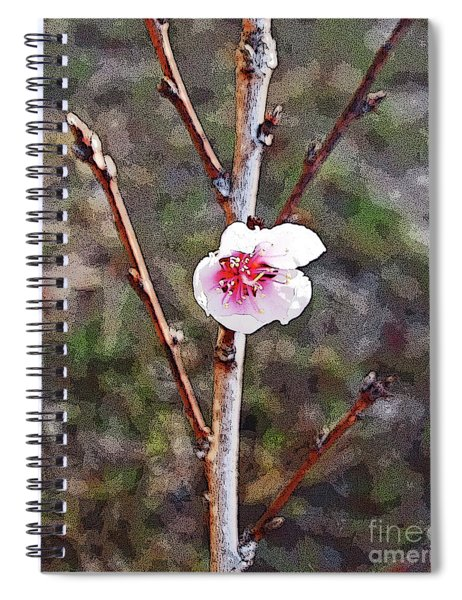 Peach Blossom Spiral Notebook