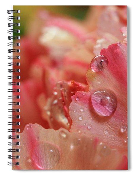 Peach And Pink Carnation Petals Spiral Notebook