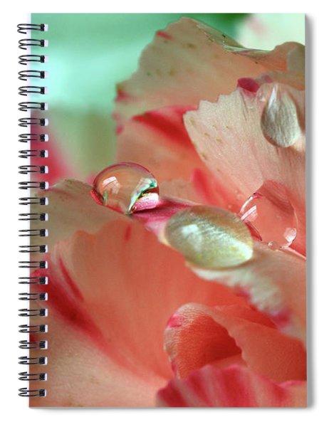 Peach Flower Petals Spiral Notebook