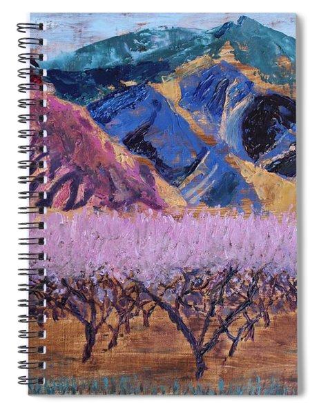 Peach Orchard Canigou Spiral Notebook