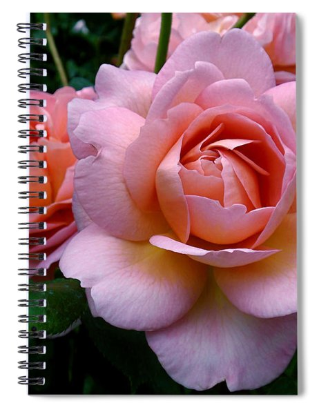 Peachy Pink Spiral Notebook