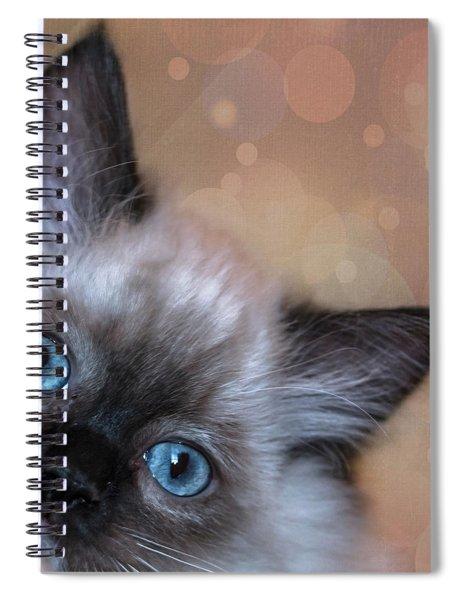 Peek-a-boo 2 Spiral Notebook