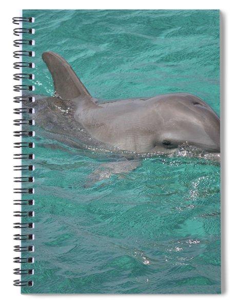 Peeking Dolphin Spiral Notebook