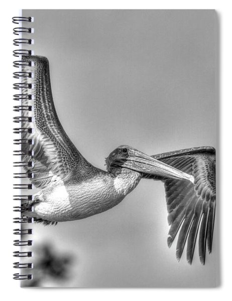 Pelican-4443 Bnw Spiral Notebook