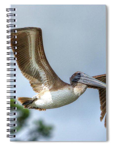 Pelican-4443 Spiral Notebook