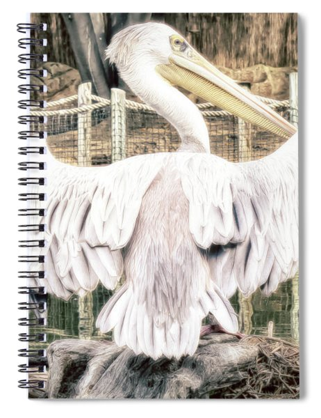 Spiral Notebook featuring the photograph Pelican by Alison Frank