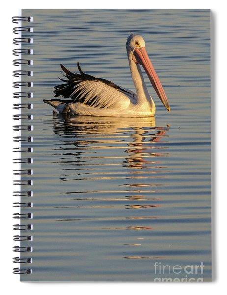 Pelican At Sunset 1 Spiral Notebook