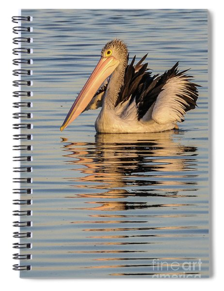 Pelican At Sunset 2 Spiral Notebook