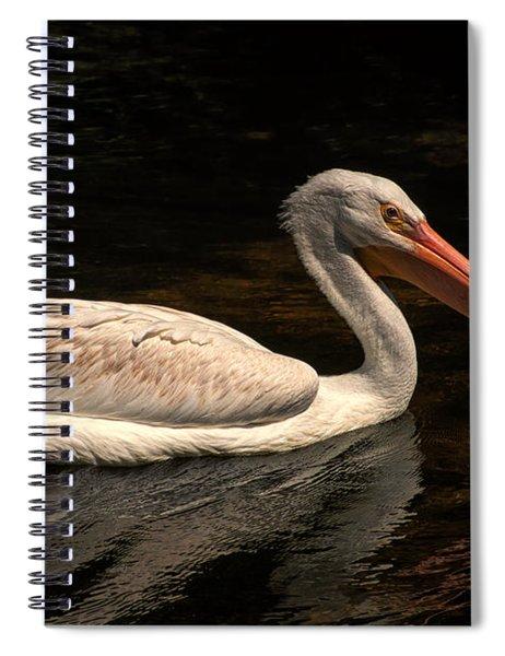 Pelican Swimming In Salisbury Spiral Notebook