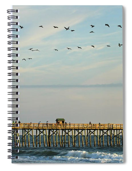 Pelicans At Flagler Beach Spiral Notebook