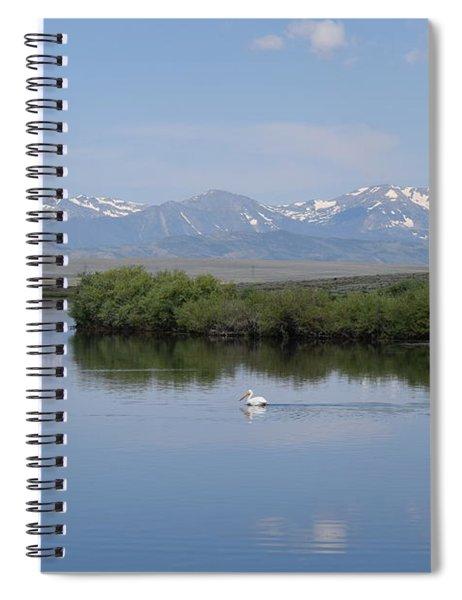Pelicans Walden Res Walden Co Spiral Notebook