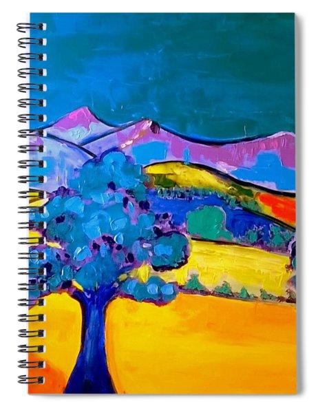 Pen Y Fan Mountain Spiral Notebook