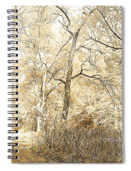Pennsylvania Autumn Woods Spiral Notebook