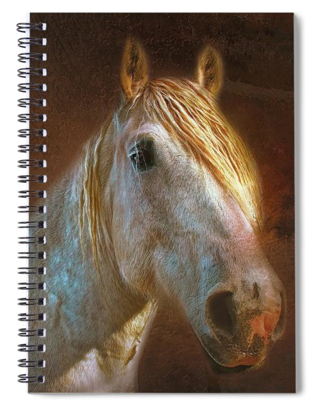 Percheron  Spiral Notebook