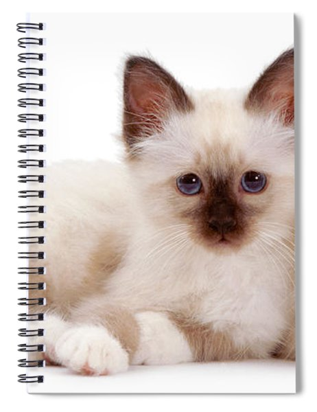 Perfectly Paired Pals Spiral Notebook