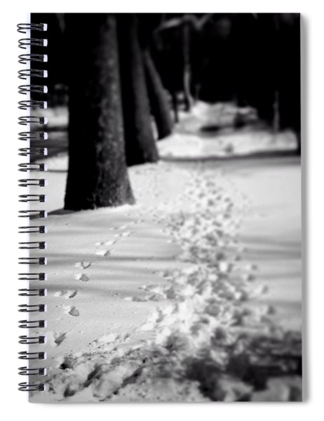 Pet Prints In The Snow Spiral Notebook