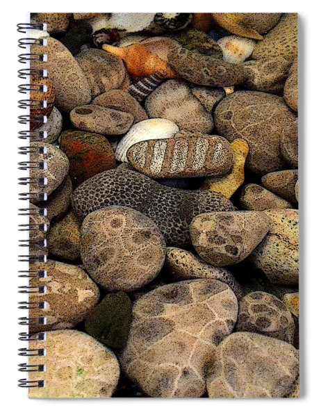 Petoskey Stones With Shells L Spiral Notebook
