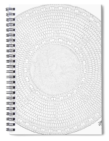 Petrograph Turtle-2 Spiral Notebook