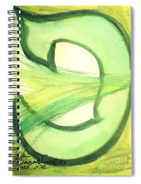 Pey Formation Spiral Notebook