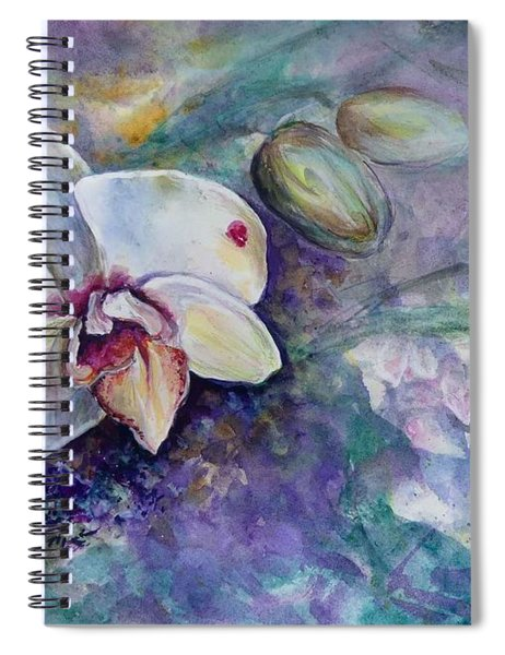 Phalaenopsis Orchid With Hyacinth Background Spiral Notebook