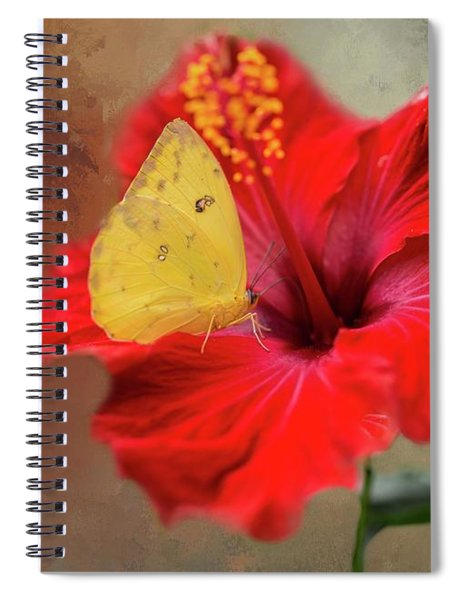 Phoebis Philea On A Hibiscus Spiral Notebook