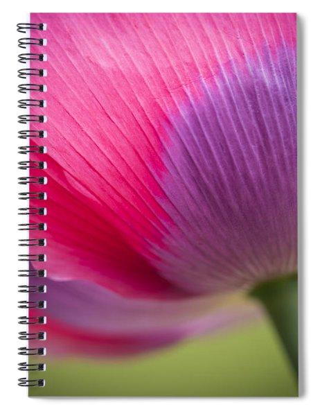 Poppy Close Up Spiral Notebook