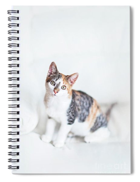 Picture Purfect Spiral Notebook