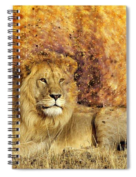 Pieces Of A Lion Spiral Notebook