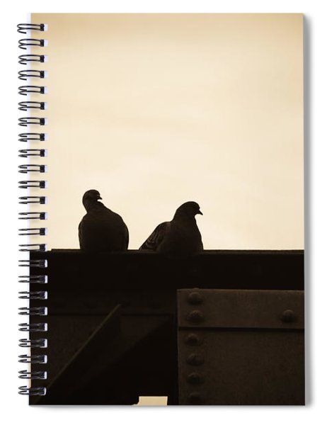 Pigeon And Steel Spiral Notebook