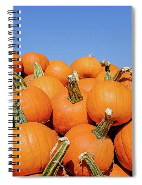 Pile Of Pumpkins Spiral Notebook