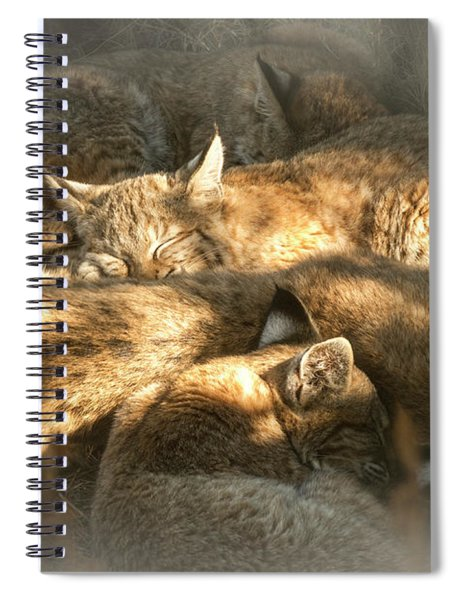 Pile Of Sleeping Bobcats Spiral Notebook