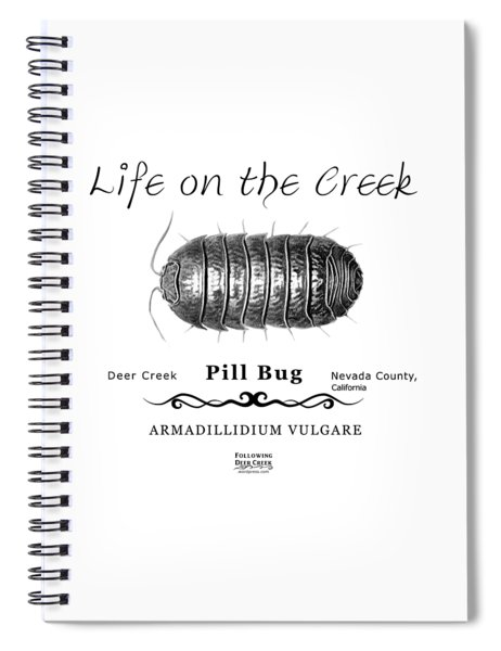 Pill Bug Armadillidium Vulgare Spiral Notebook