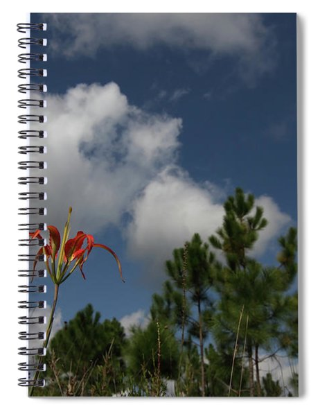 Pine Lily And Pines Spiral Notebook
