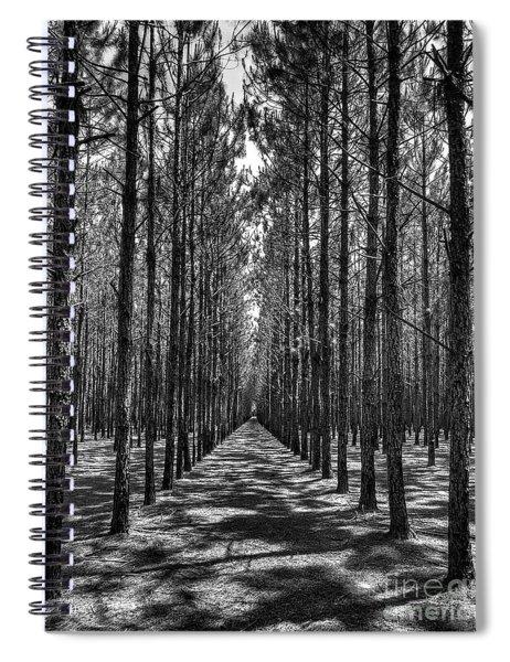 Pine Plantation 5655_6_7 Spiral Notebook