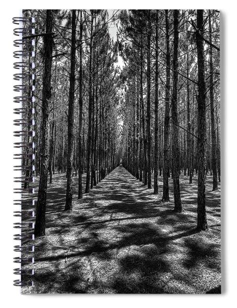 Pine Plantation Wide Spiral Notebook