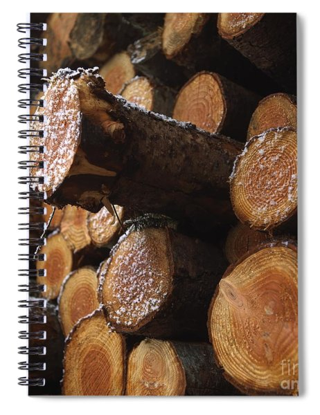 Pine Trees Spiral Notebook