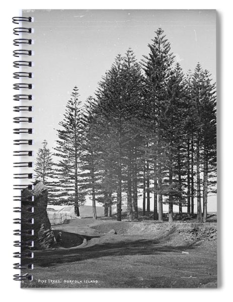 Pine Trees, Norfolk Island, Kerry And Co, Sydney, Australia, C. 1884-1917 Spiral Notebook